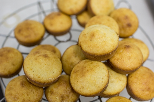 Cornbread Muffin 8216 LR